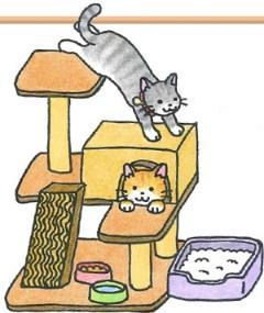 La imagen que un gato está ocioso con una torre del gato