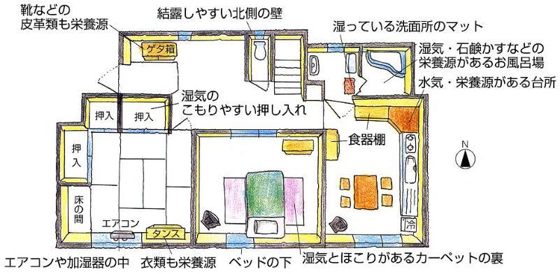 Imagen del lugar que el molde es fácil de producir en una casa