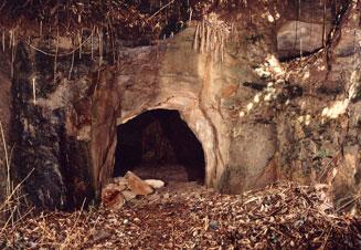 Ekoda excavan