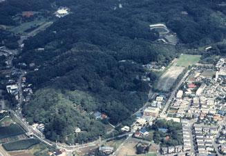 Bosque de bosque de urna de Urna de Sumiyoshi