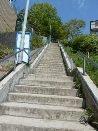 Photograph of stairs of the walking course middle