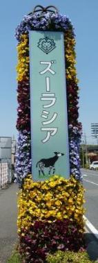 Photograph of ZOORASIA entrance signboard
