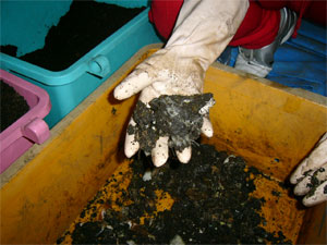 The soil mixing method 1