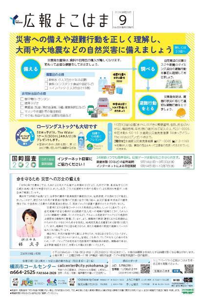 Fotografía de la tapa del Yokohama de información público 2020 9 problema