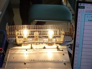 Electric bulb which generates electricity by preparations, and shines