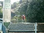 이마이 다리 버스 정류장의 이미지
