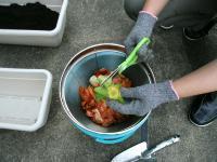 젖은쓰레기를 세세하게 자른 사진