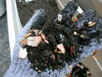 젖은쓰레기와 흙을 혼합한 사진
