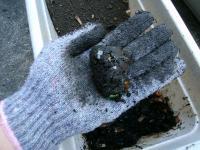 젖은쓰레기를 혼합한 흙에 물을 더한 사진