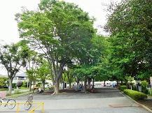 나카타쵸 미야노마에 공원