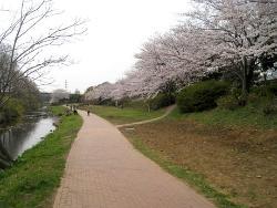 Río de Izumi espacio abierto del pro-agua
