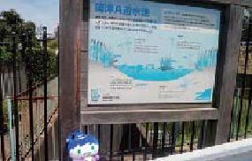 Okazu UN depósito (biotopo) de prevención de diluvio