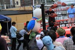 Tortuga Taro que fue hasta el anillo de la lucha libre profesional