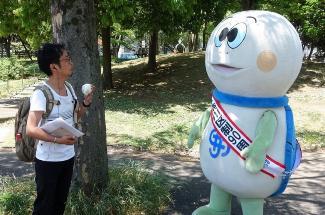 La fotografía que la tortuga Taro y parada de Hozumi