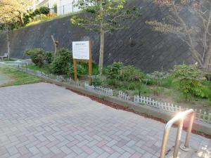 Higashitomioka Park la peonía la vista entera