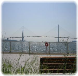 翅膀橋的照片