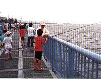 海zuri風景