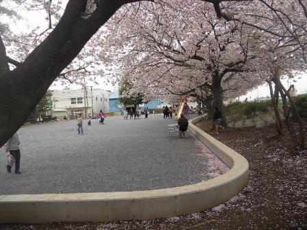 6, Hiyoshi reflejan. la fotografía de Parque de agua profunda