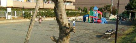 Fotografía 1 de parque de Toriyamacho