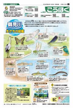 Public information Yokohama October, 2019 issue cover
