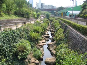 Image 1 of Morai River and Amaya Ohashi