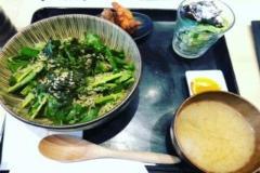 Cuenco de espinaca de mostaza japonés