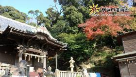 Urna de Kasuga