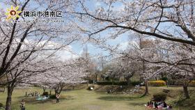 舞岡公園拳頭廣場