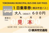 Bus daily ticket