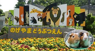 Es una imagen del Parque zoológico de Nogeyama.