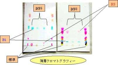 박층 크로마토 그래프법으로의 검사 결과의 이미지