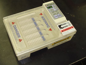 DNA의 전기 영동장치의 사진