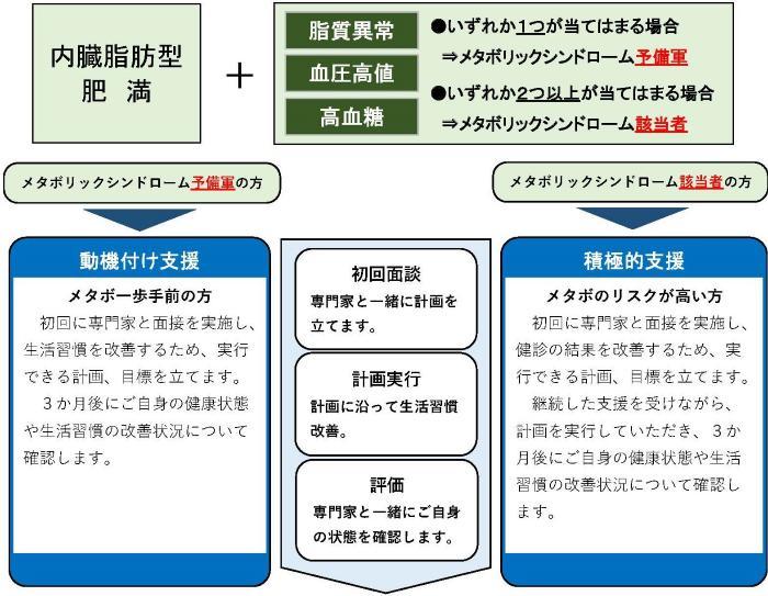 La figura de imagen del examen médico específico, instrucción de salud