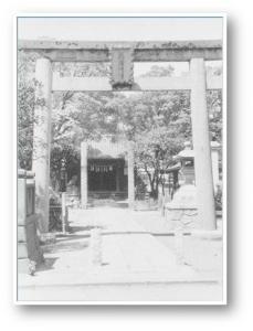 """""""Tachibana tree Shinto shrine"""""""