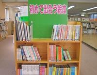 Photograph of picture book corner to come across for the first time