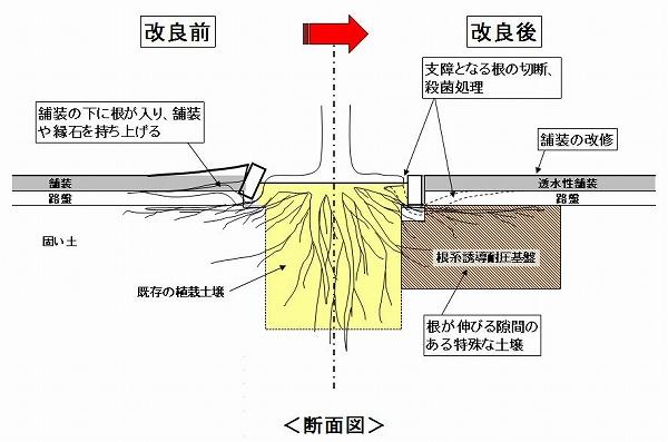 https://www.city.yokohama.lg.jp/kurashi/machizukuri-kankyo/doro/anzenshisetsu/yasashii/gairoju/gairoju-neagari.images/0013_20180904.jpg