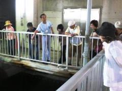 물 재생 센터 견학회의 사진