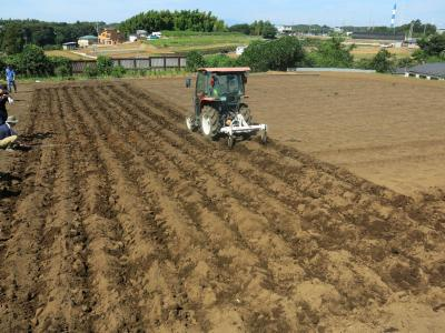 The deep cultivation business situation photograph