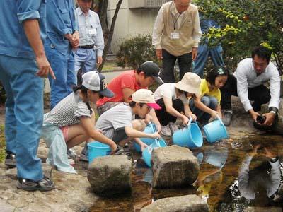 Discharge of sweetfish