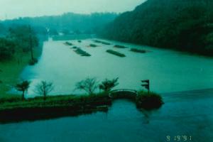 兒童的國家快樂水池塘漲水時的圖片