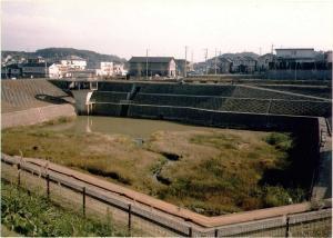 奈良川地區第一快樂水池塘的圖片