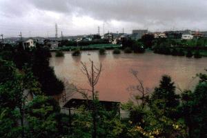 泉田向公園漲水時的圖片
