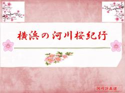 Cherry blossoms travelogue title