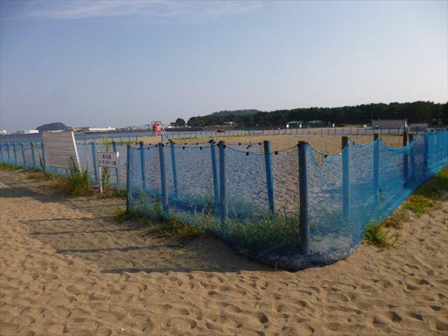 Beach sports open space
