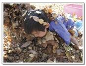Fallen leaves!