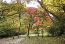 Photograph of Hitorizawa Shimin-no-Mori