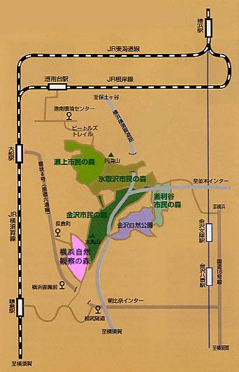 Mapa de guía de tráfico al bosque de la observación natural