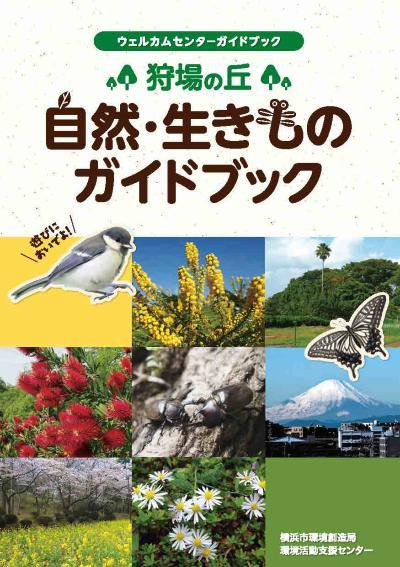 La fotografía de naturaleza de la colina, la guía de la criatura de la tierra de la caza