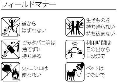 ・No estoy fuera de la manera y no tiro la basura y no usa el fuego y no toma una criatura para ir y el uso ata el animal doméstico por el día