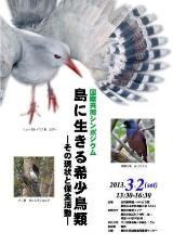 Poster (rare birds living in island) of lecture